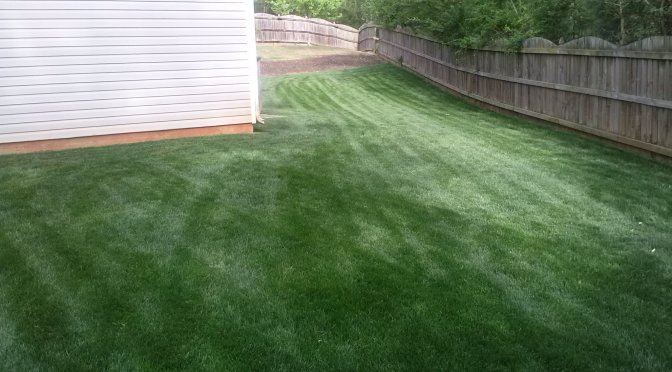 Lawn Care Dallas, GA